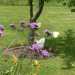 Landscape Gardening and Design Company – New Leaf Landscapes UK - Garden Design Style - Wildlife